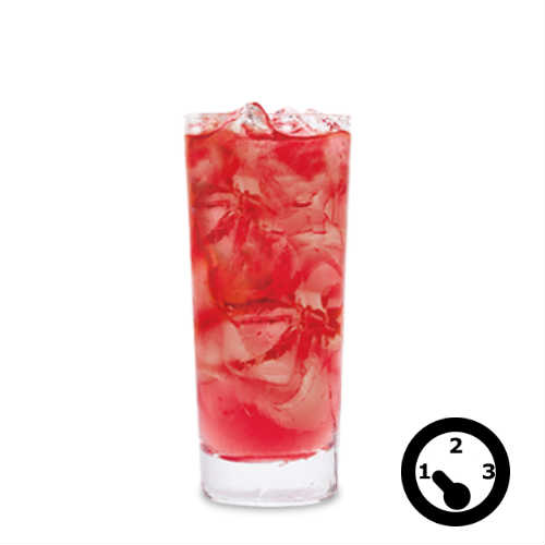level-1-mocktail-cranberry-soda